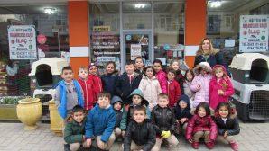 Arifiye'nin Hayvan Hastanesine Ziyaret