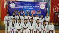 Anadolu Yıldızlar Ligi Taekwondo il karması seçmeleri yapıldı
