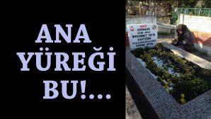 MUHAMMED FATİH SAFİTÜRK 'SENİ YETİŞTİREN ANNEN DUA'YA GELMİŞ!'