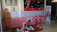 Arifiye Neviye İlkokulunda Çanakkale Zaferi Etkinliği