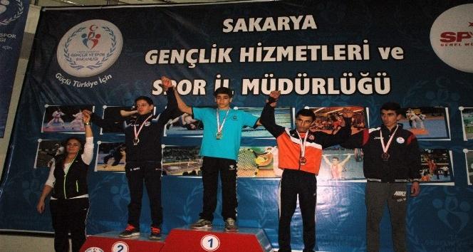 Greko-romen ve Serbest Güreş İl Birinciliği turnuvası sona erdi.