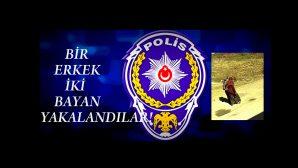 ARİFİYE'DE HIRSIZLIK YAPMIŞLARDI!