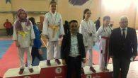 Arifiye Karate de coştu