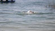 'Gölde Yüzme Tehlikeli ve Yasaktır' tabela var,dinleyen yok