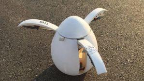 SAÜ'lü Öğrencilerden Uçan Yumurta