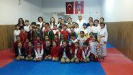 Bekir Sıtkı Öğrencilerine Arifiye HEM'de Karate tanıtımı