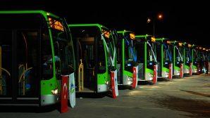 Toplu taşıma hizmetlerine 20 yeni otobüs geliyor