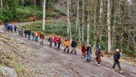Doğa Yürüyüşleri Büyük Yayla'da başladı