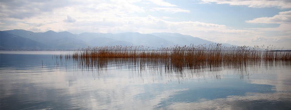 Sapanca'ya 1,4 milyon metreküp su geldi