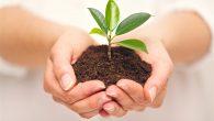 """""""Toprak için yapılan her  mesai, insanlık adına faydalı bir iştir"""""""