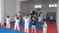 Arifiye Ayyıldızlar Karate ligine hazır
