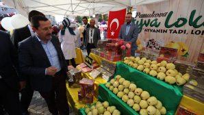 Pamukova Eko Pazar Doğal Ürünler ve Ayva Festivali gerçekleşti
