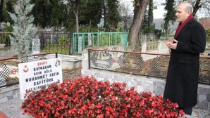 Bakan SOYLU,Arifiye'de Safitürk'ün kabrini ziyaret etti