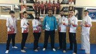 Arifiye Atılgan Spor Kulübünün Milli Başarısı