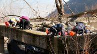 AFAD Sakarya'dan Gerçeği Aratmayan Deprem Tatbikatı