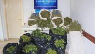 Arifiye'de uyuşturucu imalathanesine baskın