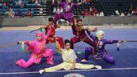 Türkiye Tai Chi Wushu Şampiyonası Nefesleri Kesti