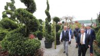 Vali Nayir,Arifiye Fidancılık ile Bilgin Botanik firmalarının üretim alanlarını gezdi.