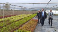 İlçemizde Süs Bitkiciliği Üreticiliği yapan firmaları ziyaret