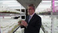 """Başkan Ekrem Yüce,""""Bitki üretiminde merkez Sakarya olacak"""""""