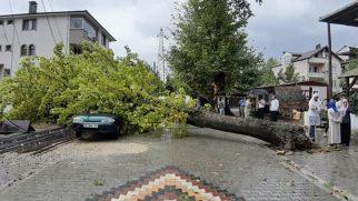 Sağanak Yağış Arifiye'de etkili oldu!