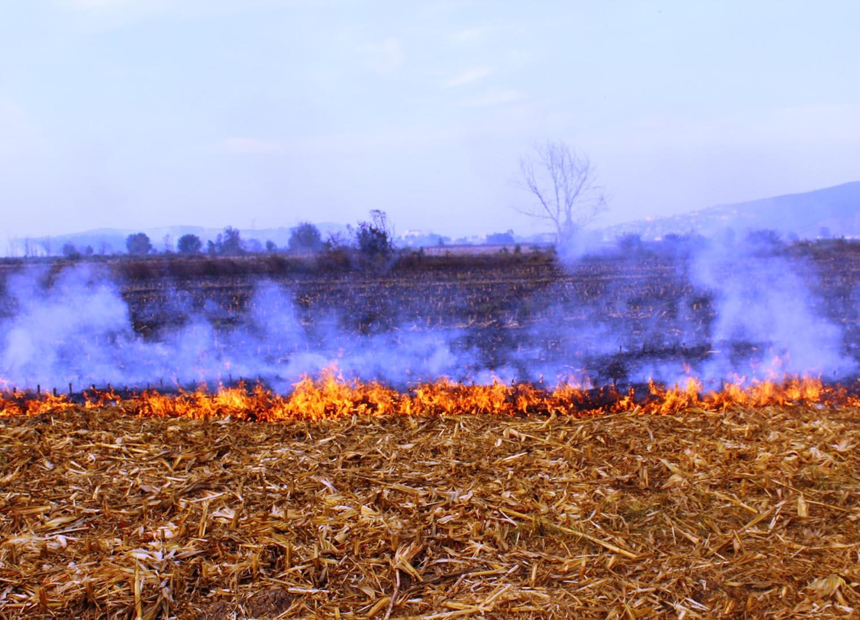 Anız yangınları toprak verimliliğini düşürür