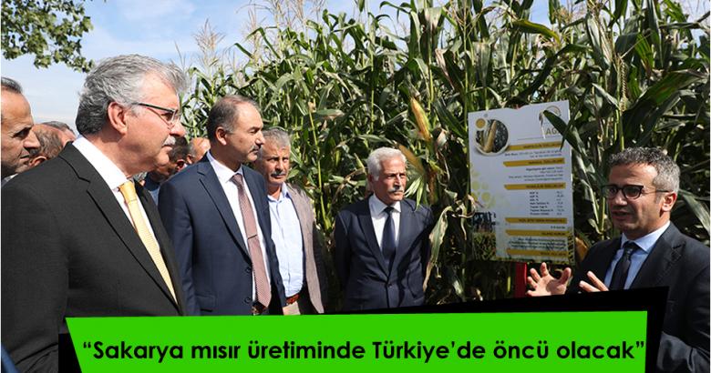 """""""Sakarya mısır üretiminde Türkiye'de öncü olacak"""""""