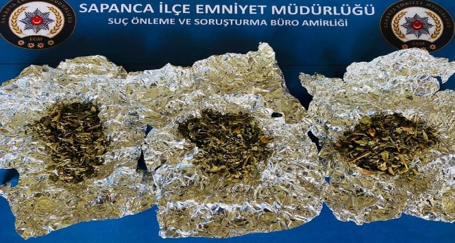 Sapanca'da 15 gram uyuşturucu madde ele geçirildi