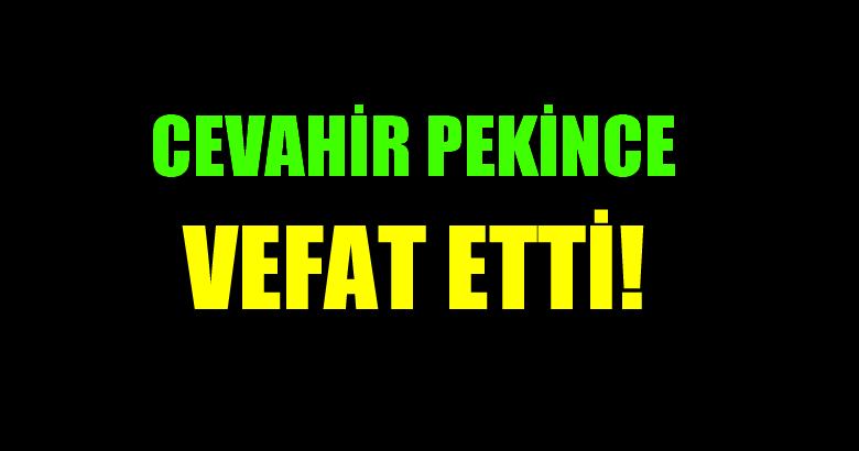 PEKİNCE AİLESİNİN ACI GÜNÜ!..