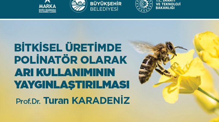 Bitkisel üretimde arı kullanımı için eğitim verilecek