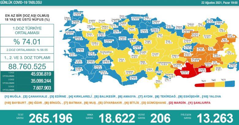 'Bugün 18.622 yeni vaka,206 yeni ölüm'