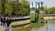 Kent Park'ta 122 cm'lik Yayın Balığı