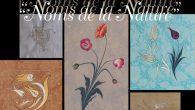 'Noms de la Nature' Paris'te Sergilenecek