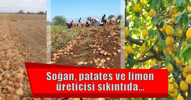 """""""Kuru soğan, patates ve limonda ihracata getirilen kısıtlama kaldırılmalıdır"""""""