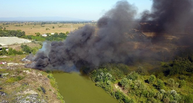 Sakarya'da çöplük yangını
