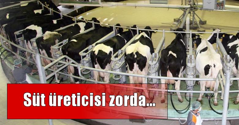 """(TZOB) Genel Başkanı Şemsi Bayraktar,""""Süt fiyatları acilen artırılmalı"""""""
