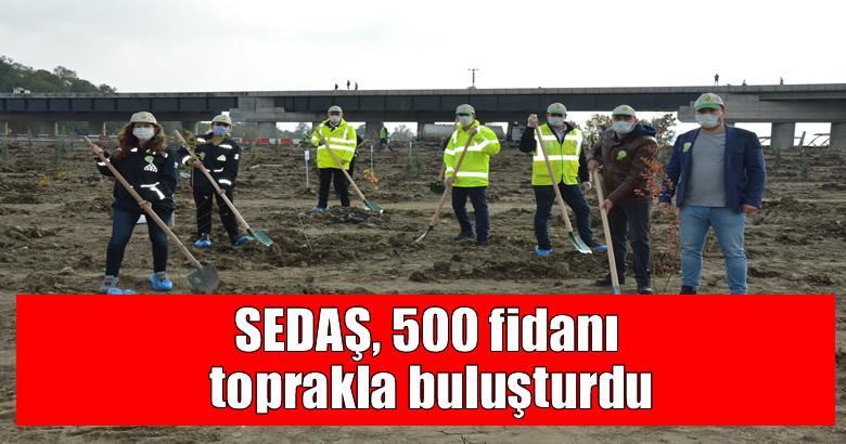 SEDAŞ, 500 fidanı toprakla buluşturdu