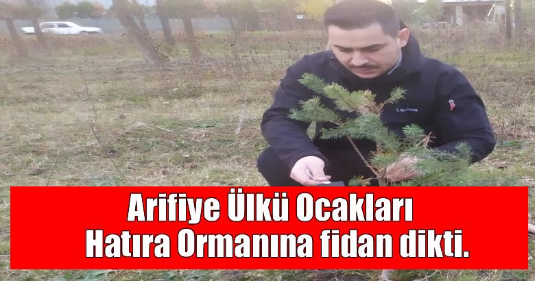 Arifiye Ülkü Ocakları Hatıra Ormanına fidan dikti.