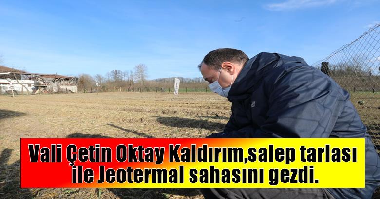 Vali Çetin Oktay Kaldırım,salep tarlası ile Jeotermal sahasını gezdi.
