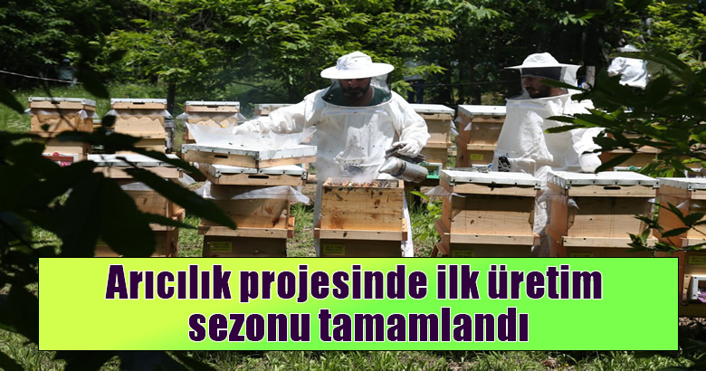 Arıcılık projesinde ilk üretim sezonu tamamlandı