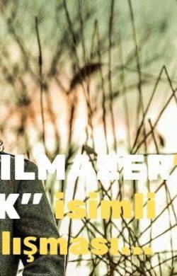 """Arifiye'li Bilal YILMAZER'den """"SANIK"""" isimli klip çalışması…"""