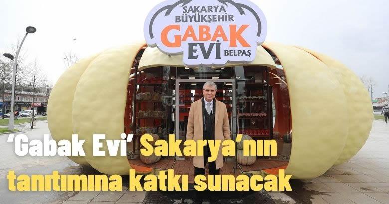 'Gabak Evi' Sakarya'nın tanıtımına katkı sunacak