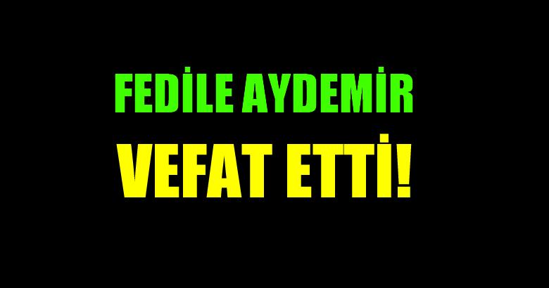 AYDEMİR AİLESİNİN ACI GÜNÜ!..